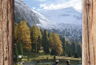 Genieße den goldenen Herbst in den Zillertaler Bergen