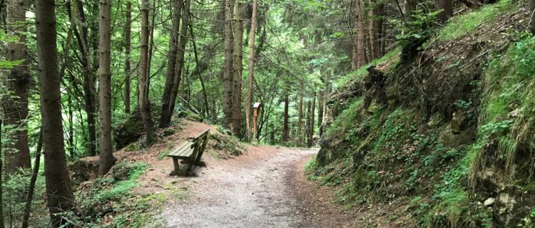 Wanderung Maria Brettfall