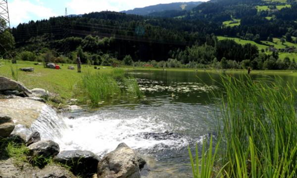 Fliegenfischen im Zillertal in Stumm am Fischteich