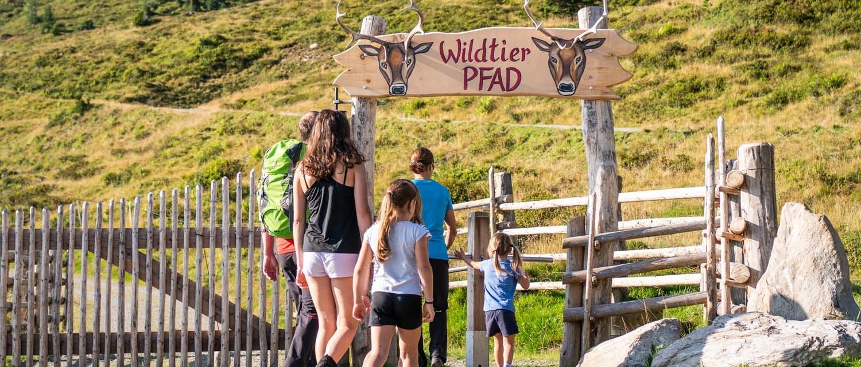 Themenwanderweg Wildtierpfad im Zillertal