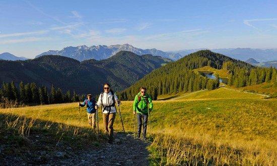 Geführte Wanderungen im Zillertal