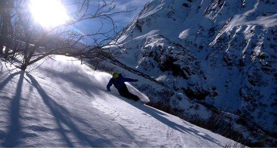 snowboarding backyardaustria